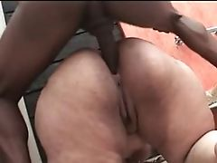 Anal Sex, BBW, Brazilian, Pawg,