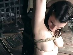BDSM, Bondage, Caning, Nipples, Rough, Spanking, Submissive, Torture,