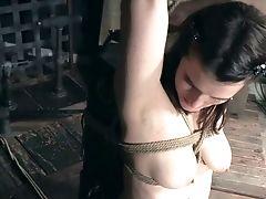 BDSM, Bondage, Caning, Nipples, Rough, Spanking, Submissive, Torture,