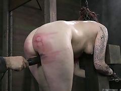 BDSM, Bondage, Fetish, Hunk, Spanking, Submissive, Torture,
