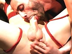 Anal Sex, BDSM, Blindfold, Blowjob, Bondage, Domination, Extreme, Fisting, Submissive,