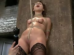 BDSM, Hogtied,