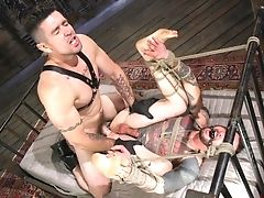 Anal Sex, BDSM, Blowjob, Bondage, Brutal, Domination, Helpless, Submissive, Tattoo,