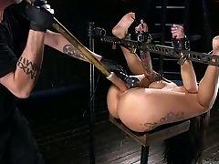 Torture: 94 Videos
