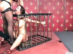 Bdsm, Schönheit, Bondage, Brünette, Im Käfig, Maulfick, Saftig, Rau, Mager, Strapon,
