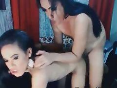 Ethnic, Horny, Sexy, Shemale, Tranny,